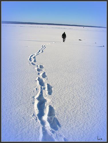 Leave A Trail Cesblogs