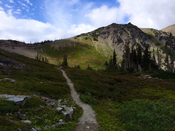 Hiking Networking