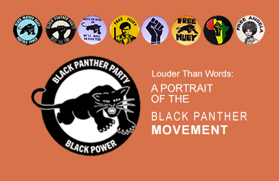 CALLOUT_BlackPantherParty
