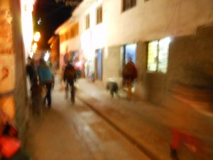 The first shot of the Old English Sheepdog. I was frantically running while taking this shot, that's why its a little blurry.