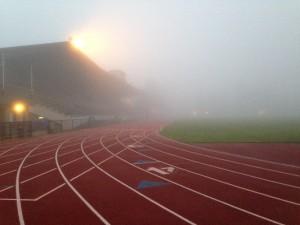 morning mist- track