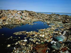 Plastic Pollution in Alaskan Waters