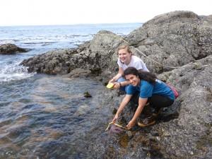San Juan Island photos 264